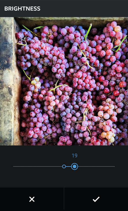 Instagram安卓版 V2.3.5